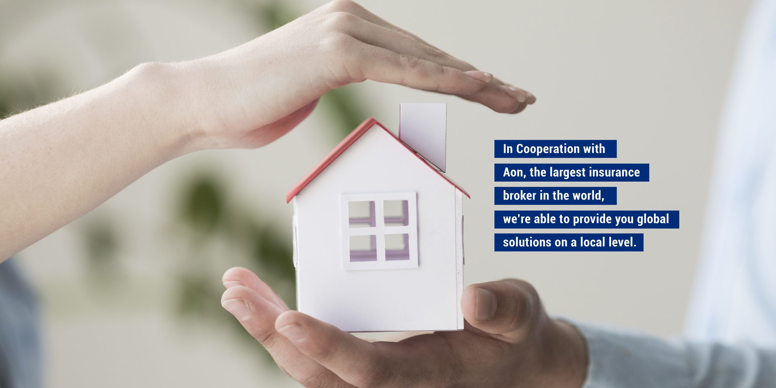 AB Risk Solutions_Home Header 2 with text_12212020